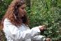 Milene Matos estuda biodiversidade do Buçaco