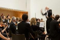 Festivais de Outono 2014: dar palco a jovens talentos e a artistas de renome