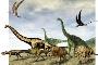 Exposição paleontologia