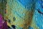 Semana da Geologia com programa especial de atividades