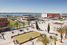 Universidade de Aveiro entre as universidades mais prestigiadas do mundo