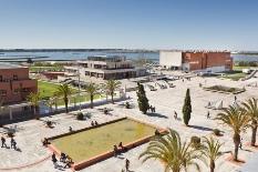 Universidade de Aveiro entre as universidades mais prestigiadas do mundo