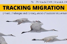 Conferência Anual da British Ornithologists¿ Union - Tracking migration: drivers, challenges and consequences of seasonal movements
